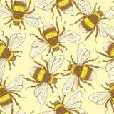 O esboço tropeça a abelha no estilo do vintage Imagens de Stock Royalty Free