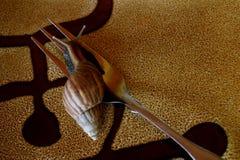 O escargot está vivo Fotos de Stock Royalty Free