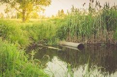O esgoto derrama desperdiça para fora ao conceito do lago/ecologia: o esgoto derrama desperdiça para fora ao lago fotografia de stock royalty free