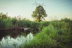 O esgoto derrama desperdiça para fora ao lago/assunto da ecologia: Desperdice o volume de água da tubulação de água no lago fotos de stock royalty free
