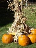 O espírito de Halloween foto de stock royalty free