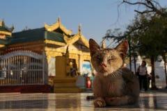O espírito de Myanmar fotos de stock