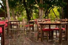 O espaço para refeições de madeira, fundo da floresta Fotos de Stock Royalty Free