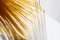 O espaguete está verticalmente sob a luz solar em um branco Foto de Stock