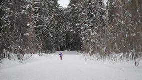 O esquiador patina nas madeiras, através das árvores filme