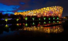 O estádio interno nacional: o ninho dos pássaros no nig Fotos de Stock