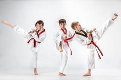 O estúdio disparou do grupo de crianças que treinam artes marciais do karaté foto de stock royalty free