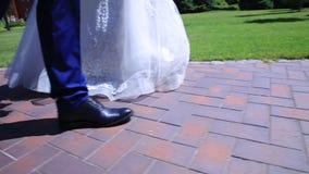 O estabilizador, pés close-up, noivos vai ao parque vídeos de arquivo