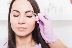 O esteticista arranca as sobrancelhas de uma jovem mulher com pinça foto de stock