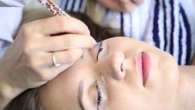 O esteticista aumenta as pestanas para a menina bonita Procedimento da extensão da pestana video estoque