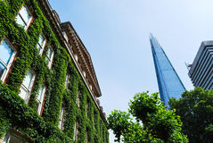 O estilhaço do vidro visto da construção hera-folheada do hospital do indivíduo Imagem de Stock Royalty Free