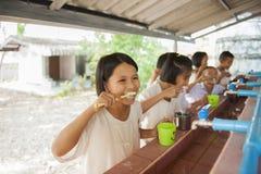 O estudante aprende escovar os dentes imagem de stock royalty free