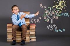 O estudante do menino demonstra o princípio de fotossíntese fotos de stock royalty free