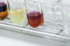 O estudo que separa pela filtragem as subst?ncias componentes da mistura l?quida imagem de stock
