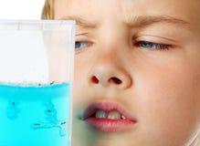 O exame minucioso do menino olha no aquário do hélio - exploração agrícola da formiga Imagens de Stock