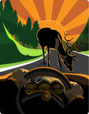 O excitador que evita perigos da estrada Fotografia de Stock Royalty Free