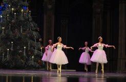 O fairy- do floco de neve o segundo do ato reino dos doces do campo em segundo - a quebra-nozes do bailado foto de stock