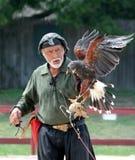 O falcoeiro real no renascimento justo Imagem de Stock