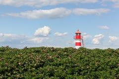 O farol de Oddesund em Dinamarca Fotos de Stock