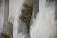 O favo de mel é construído na parede do revestimento Foto de Stock Royalty Free