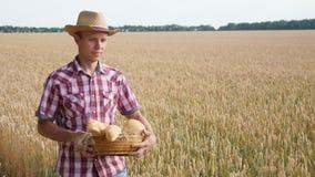 O fazendeiro anda o campo de trigo e leva uma cesta do pão video estoque