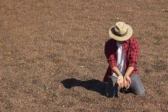 O fazendeiro com o chapéu que está no café secado, guardando o feijão de café secado, roasted o feijão de café no fundo, foco sel Imagens de Stock Royalty Free