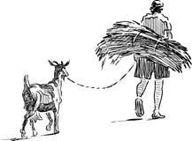 O fazendeiro com galho e sua cabra vão em casa Fotos de Stock Royalty Free