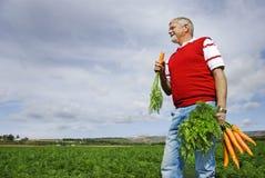 O fazendeiro da cenoura Fotografia de Stock Royalty Free