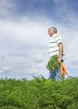 O fazendeiro da cenoura Imagem de Stock Royalty Free