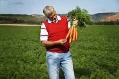 O fazendeiro da cenoura Fotografia de Stock