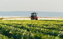 O fazendeiro em um trator com um pulverizador faz o adubo para o vegetal novo imagens de stock