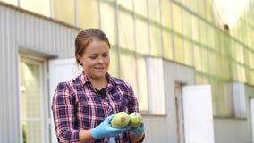 O fazendeiro fêmea bonito do retrato em luvas azuis guarda uma colheita do abobrinha vídeos de arquivo
