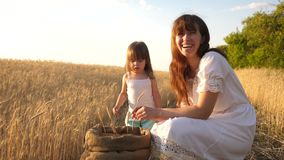 O fazendeiro feliz da mãe joga com pouco filho, filha no campo a mãe e pouca criança estão jogando com grão na video estoque