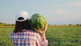 O fazendeiro leva uma melancia madura em seu ombro filme