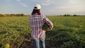 O fazendeiro leva uma melancia madura nas mãos vídeos de arquivo