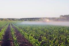 O fazendeiro no pulverizador arrastado introduz o microfertilizer no campo de milho novo fotos de stock royalty free