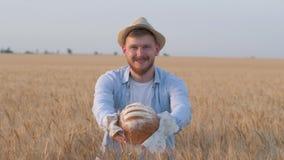 O fazendeiro novo bem sucedido, indivíduo rural feliz dá-lhe rooty saboroso e sorrisos que fica no campo do pão integral da grão  video estoque