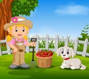 O fazendeiro novo perto do seu colheu frutos ilustração stock