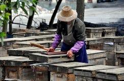 Pengzhou, China: Fazendeiro que tende às colmeia da abelha Imagens de Stock