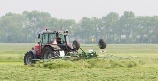 O fazendeiro usa o trator para espalhar o feno no campo imagens de stock