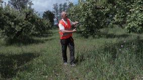 O fazendeiro verifica os ramos da seca na árvore de maçã filme