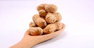O feijão, come e frutifica Fotos de Stock