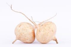 O feijão de 'batata doce' (Jicama) é fruto bulboso do vegetal de raiz no fundo branco Fotografia de Stock Royalty Free