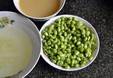 O feijão de soja fresco e a sopa vegetal Foto de Stock