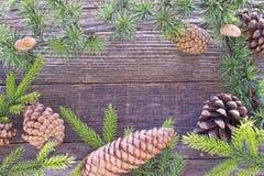 O Feliz Natal molda com agulhas e cones do pinheiro Imagem de Stock Royalty Free