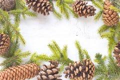 O Feliz Natal molda com agulhas e cones do pinheiro no branco Fotos de Stock