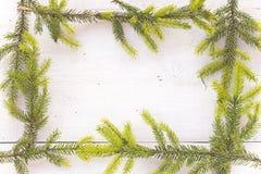 O Feliz Natal molda com as agulhas do pinheiro no branco Imagem de Stock Royalty Free