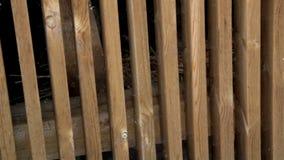 O feno dentro da madeira serrada de madeira da gaiola planejou a indústria de madeira material da serra video estoque