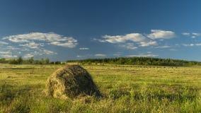 O feno que colhe fazendeiros do feno da pilha está preparando-se para flutuar no campo das nuvens filme