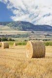 O feno rola em um campo colhido Fotos de Stock